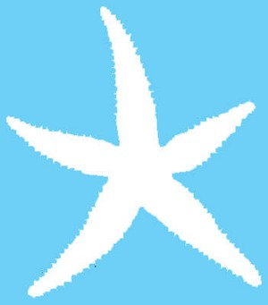 Vinyl Decal Starfish White